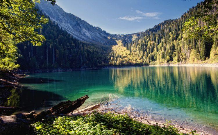Солнечная Абхазия. Незабываемые выходные.