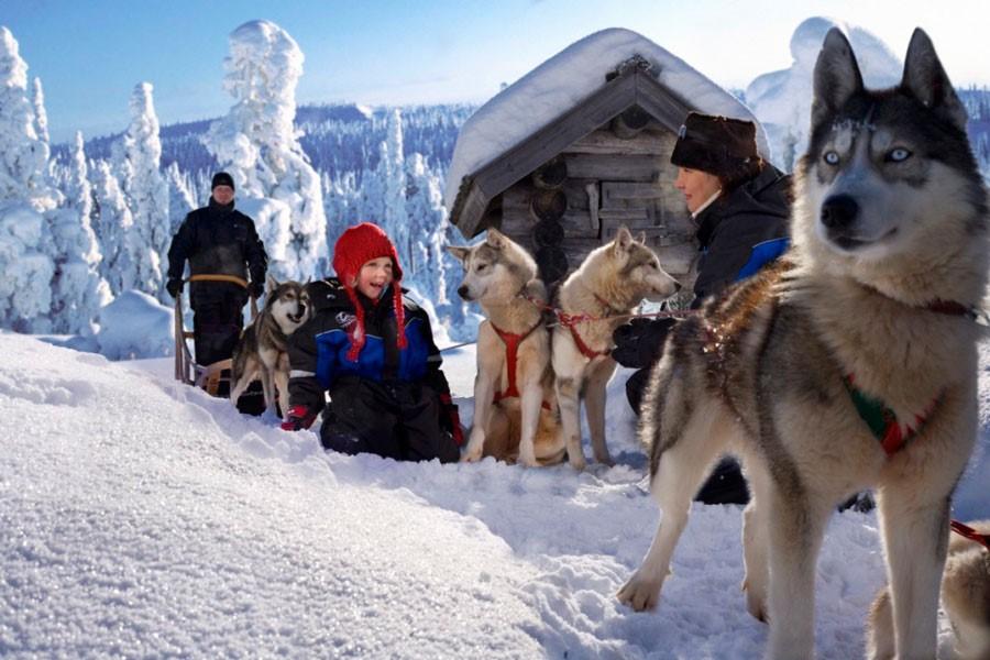 Новогодний Санкт-Петербург - В гости к Карельскому Деду Морозу и его друзьям