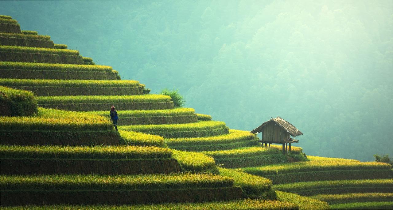 Покажи паспорт — получи скидку! Новая акция для туристов от Таиланда
