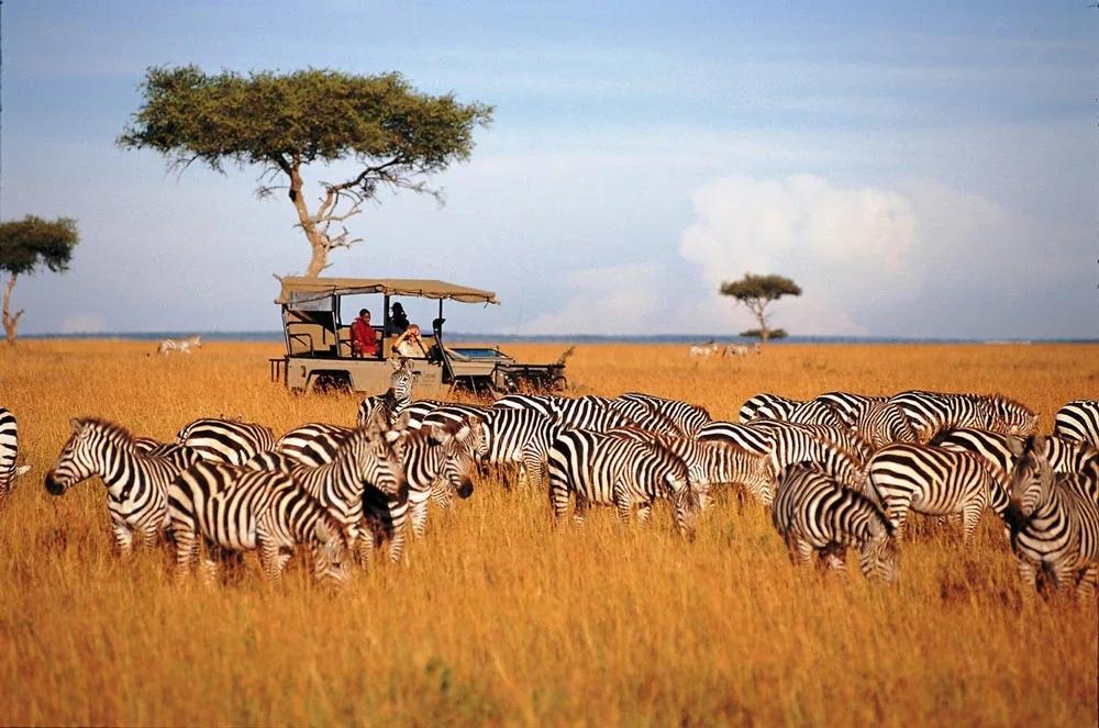 Кения: На пути Африканского Разлома (6д/5н)