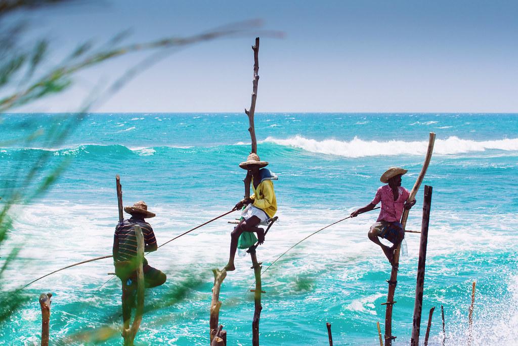 Шри-Ланка возвращает бесплатные визы из-за коронавируса