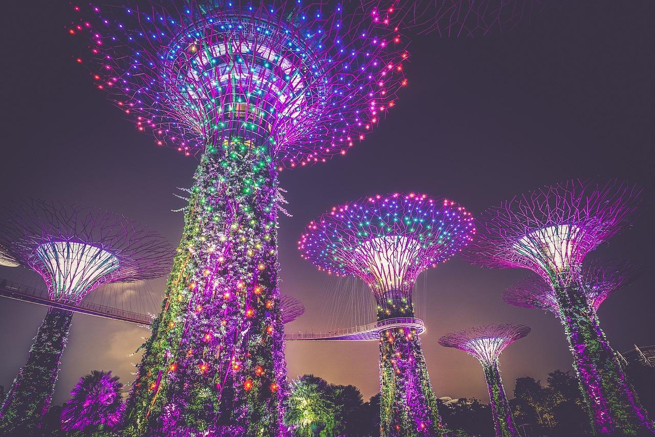 Большое азиатское приключение (29.10)